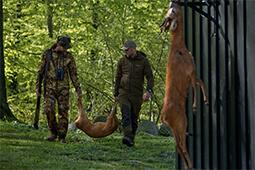 Jagdausruestung für Wildbergung