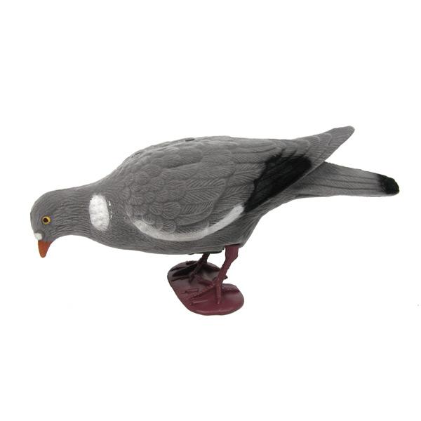 Lockvogel Taube - Lockjagd