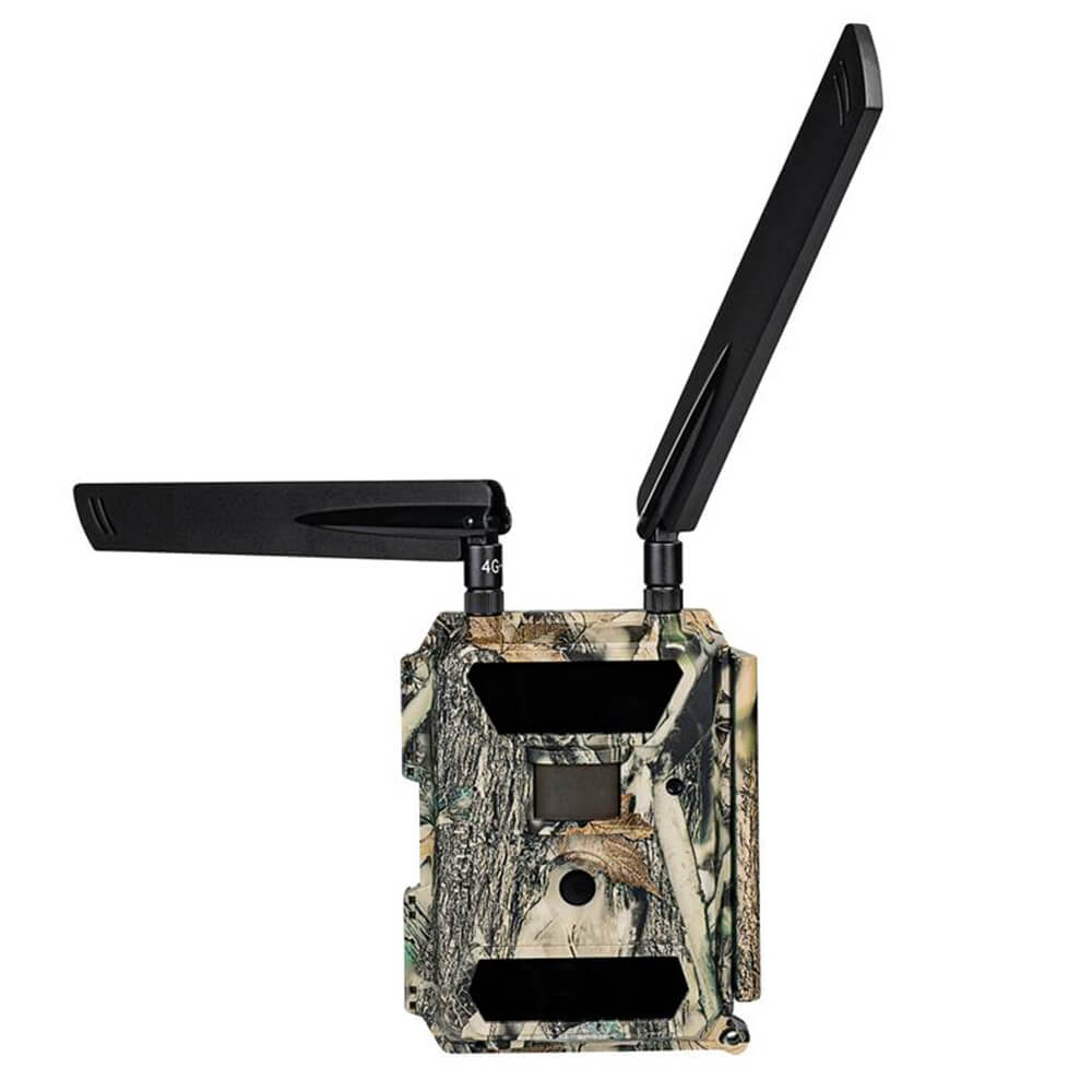 Dörr Wildkamera SnapShot Multi Mobil 4G - Dörr
