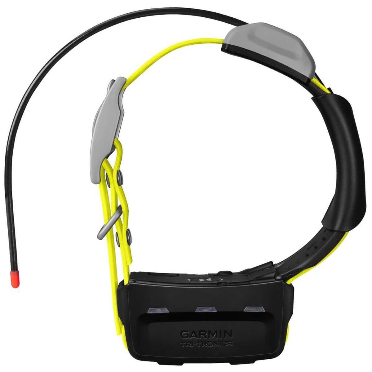 Garmin K5 GPS Hunde-Ortungshalsband